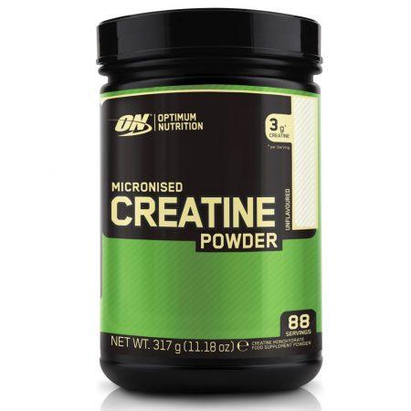 ON Creatine Powder 317 g